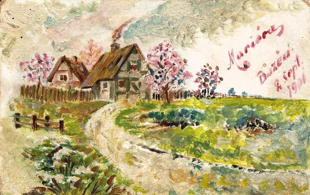 CP pictata 1901