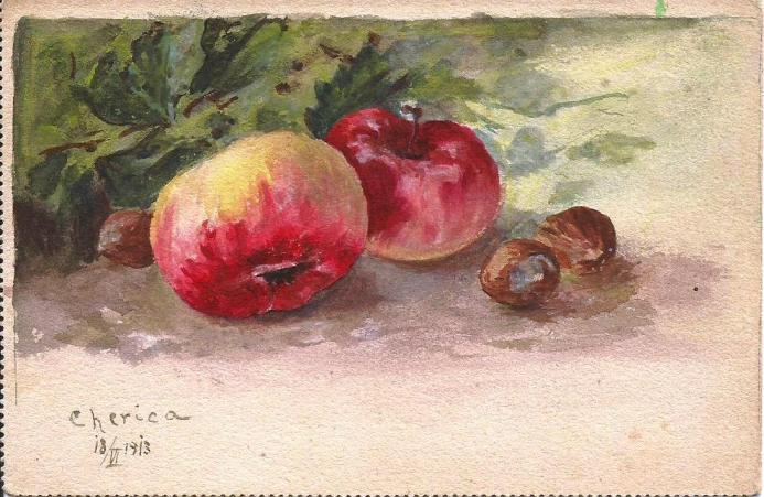 CP pictata 1913