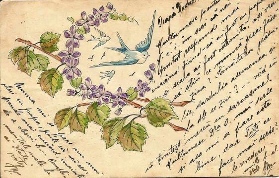 1901_2b