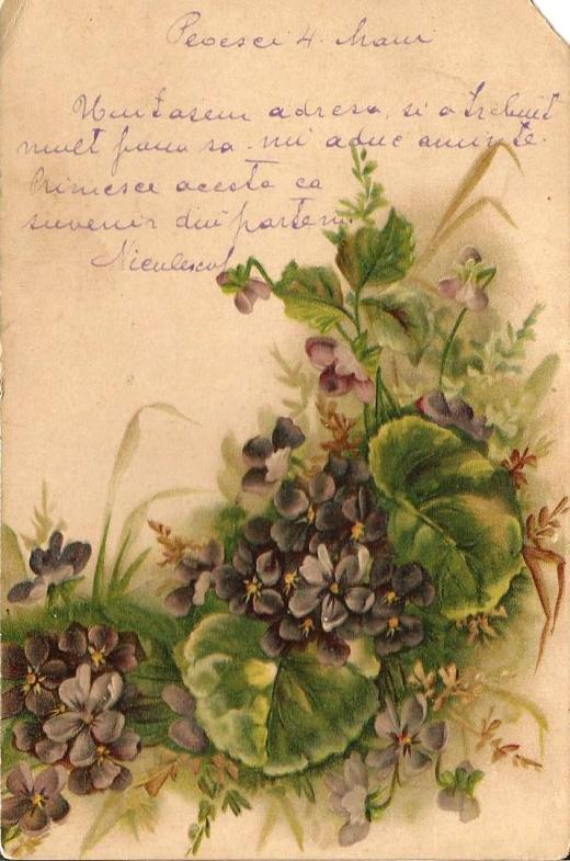 1902_2b