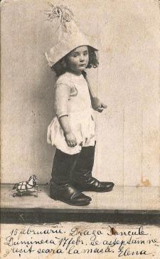1902_6a