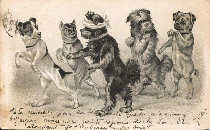 1902_6b