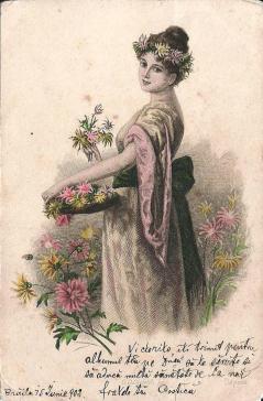 1902_7a