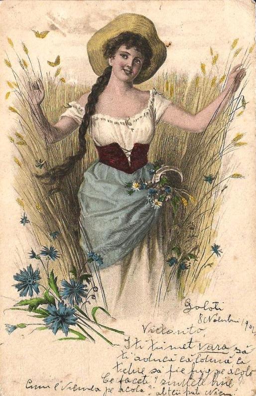 1902_7b