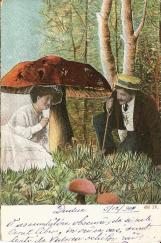1904_1b