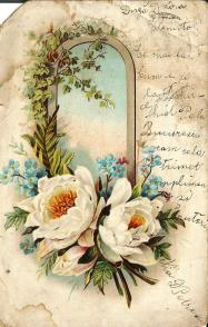 1904_6a