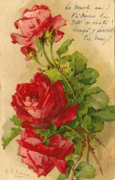 1916b